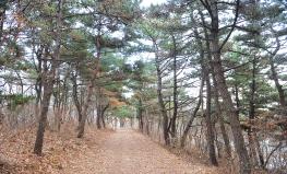 [세어도마을]둘레길 걷기 이미지입니다.