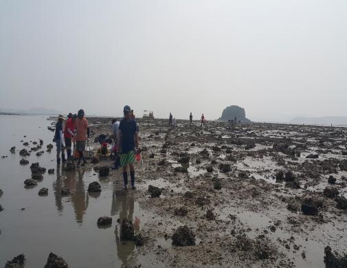[웅도마을]웅도어촌체험마을 이미지입니다.
