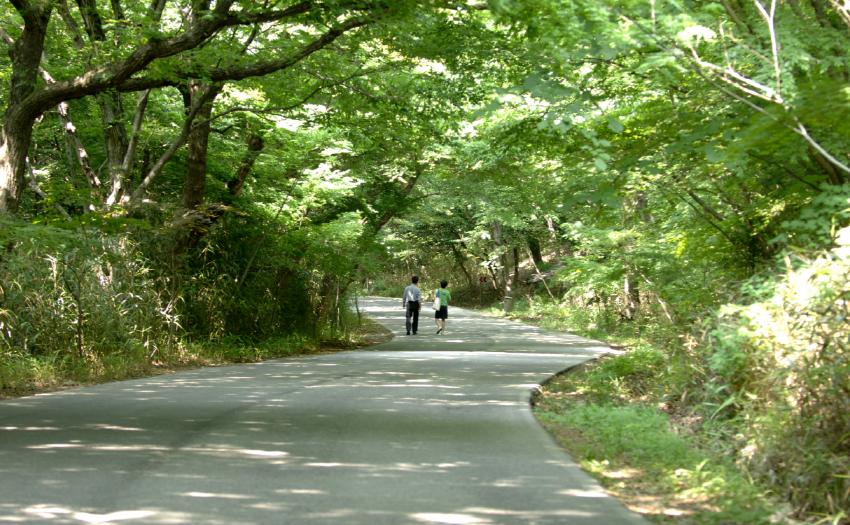 구림리숲길 이미지입니다.